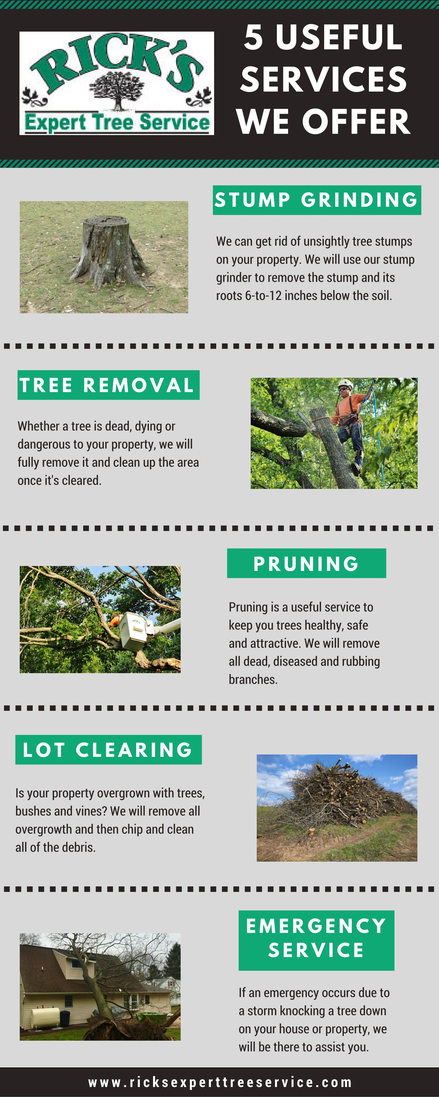 Blog | Ricks Expert Tree Service